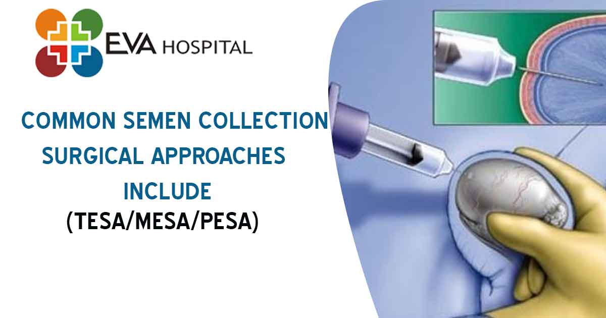 Common Semen Collection Surgical Approaches Include;