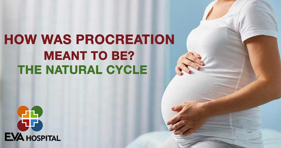 How Was Procreation Meant To Be? - The Natural Cycle