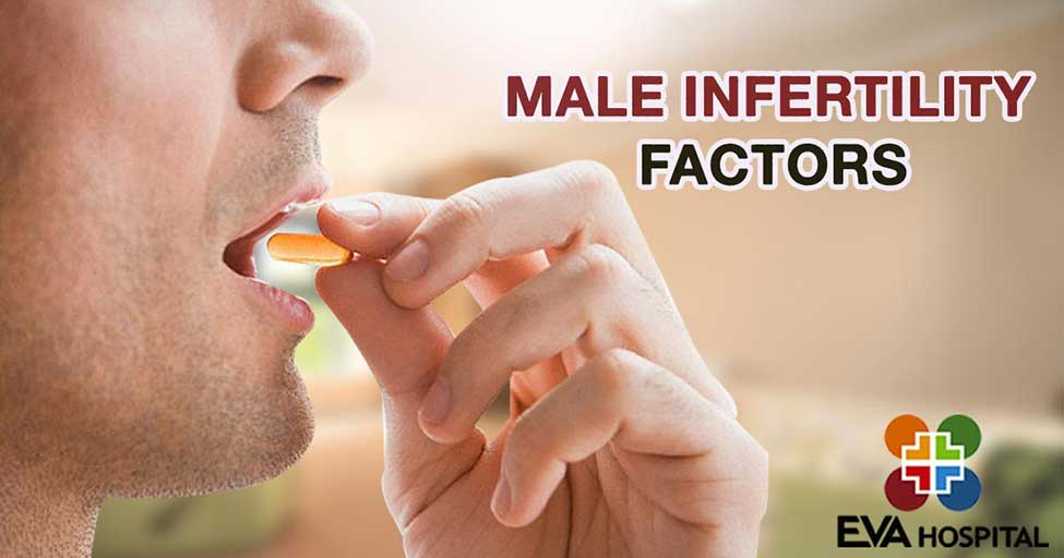 Male Infertility Factors