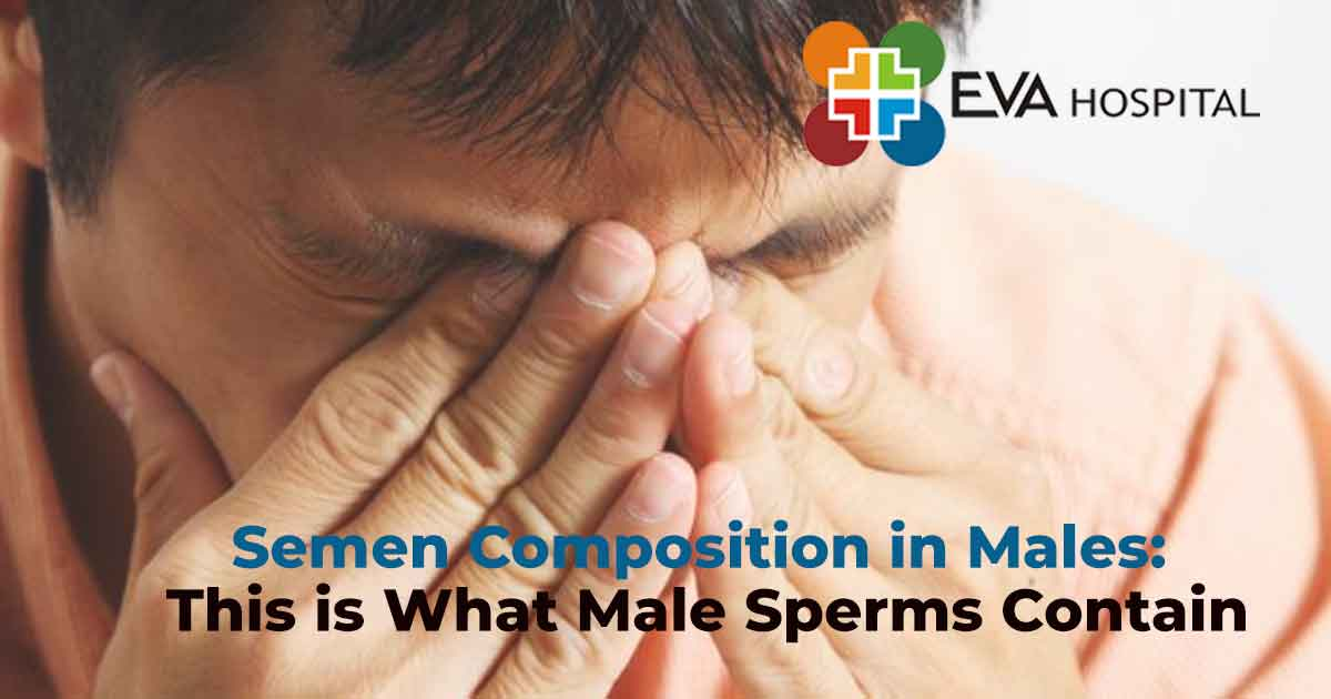 Semen Composition in Males: This is What Male Sperms Contain