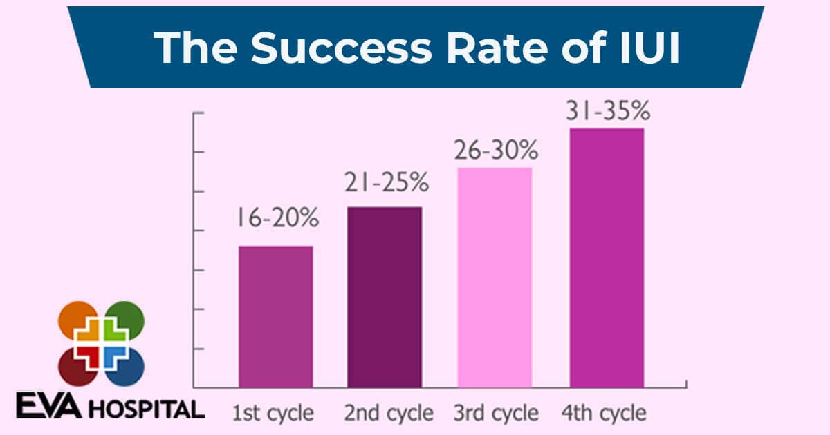 The Success Rate of IUI