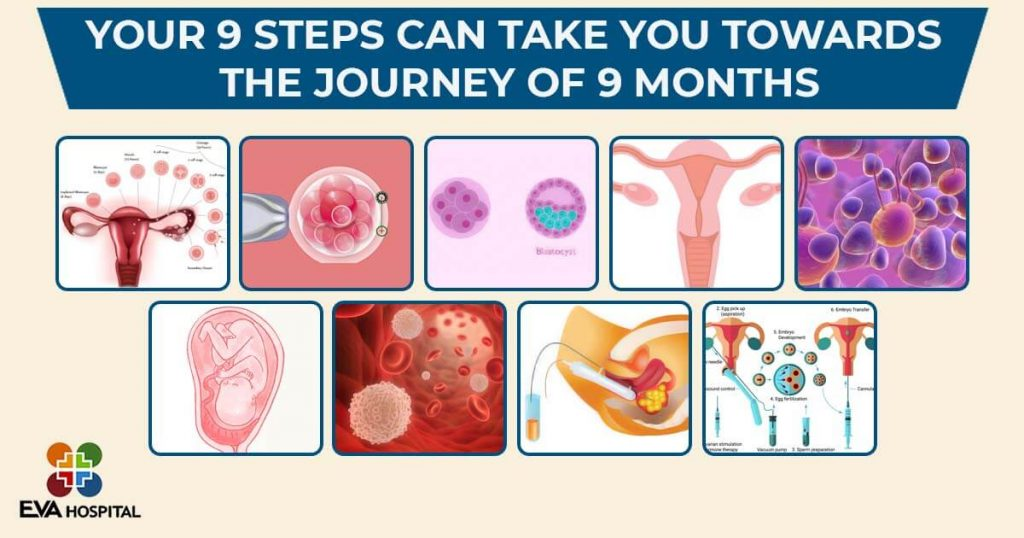 Your 9 Steps Can Take You Towards The Journey Of 9 Months