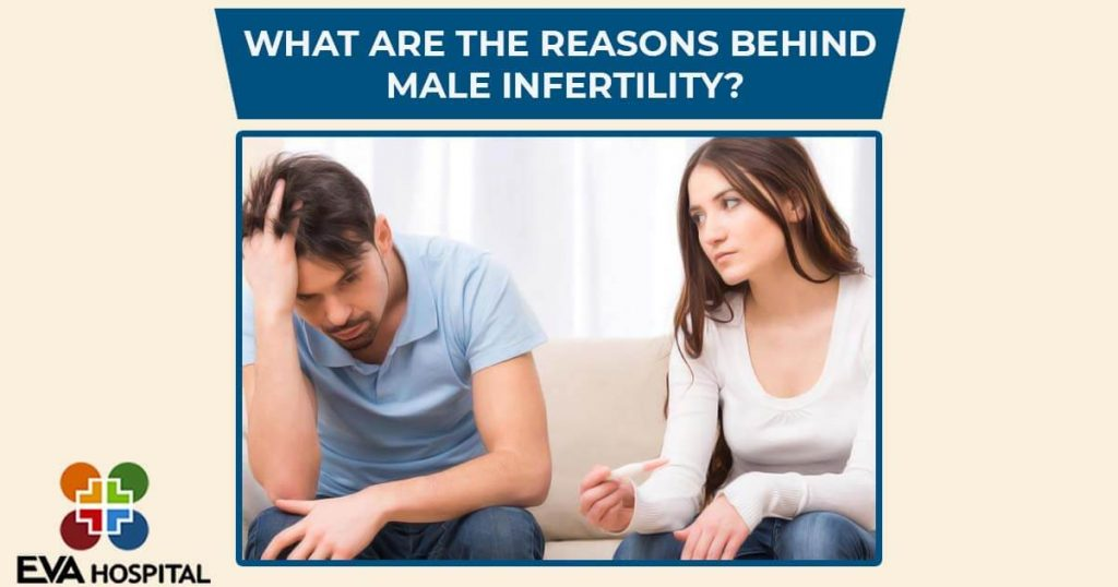 What are the Reasons Behind Male Infertility?