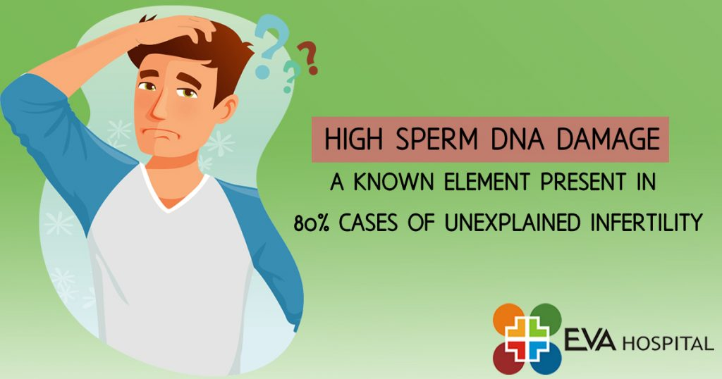 high sperm dna damage