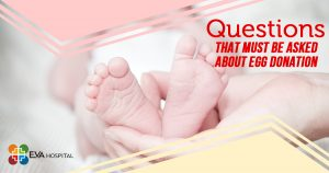 Questions That Must be Asked About Egg Donation (1)