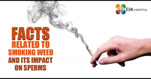 Facts Related To Smoking Weed and its impact on Sperms
