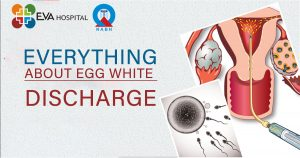 Everything about egg white discharge