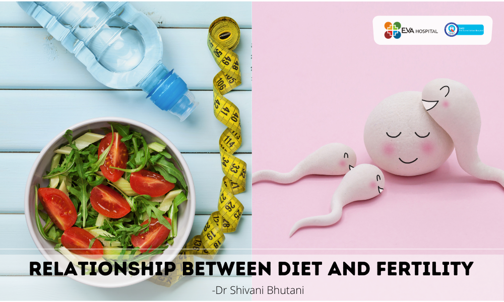 Relationship-between-Diet-and-Fertility