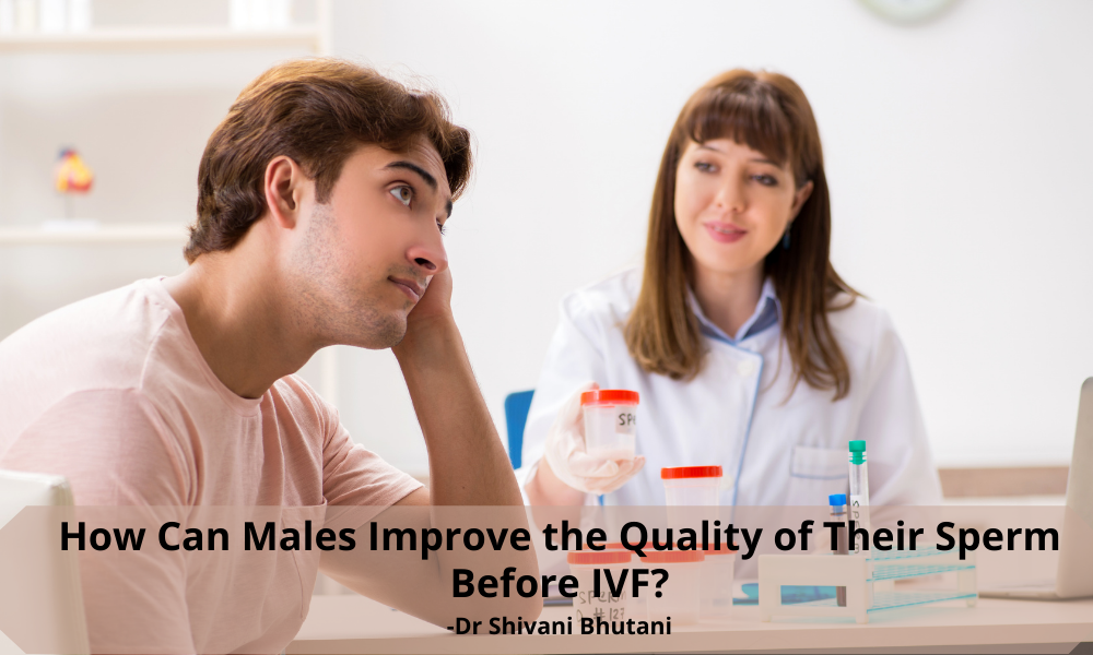 How can Males improve the quality of their sperm before IVF